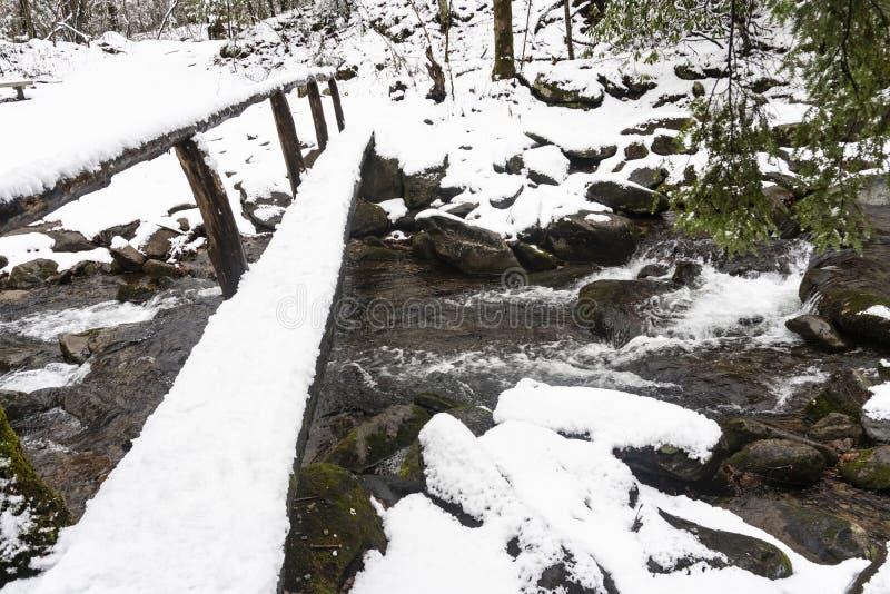 在大烟山雪盖在一条小小河的一本脚日志 库存照片
