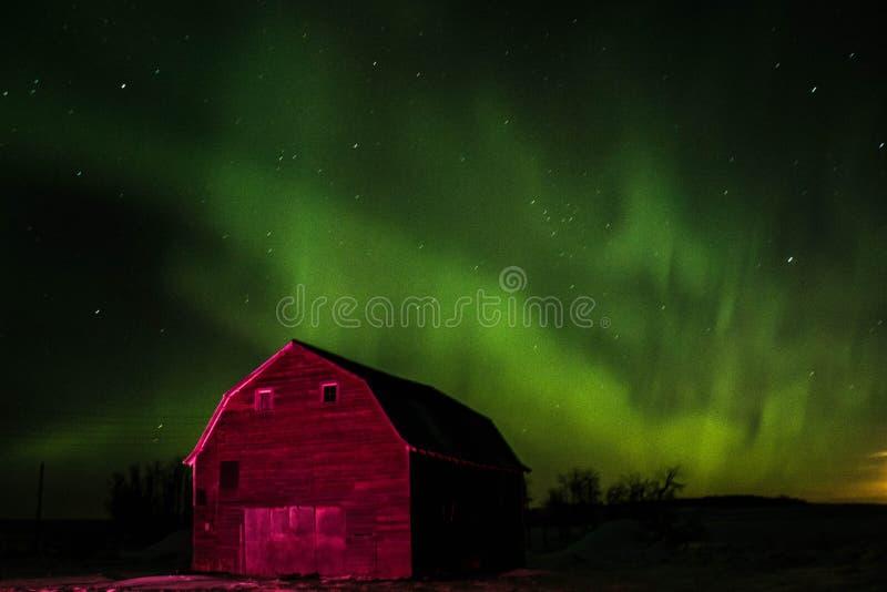在大草原的北极光 图库摄影