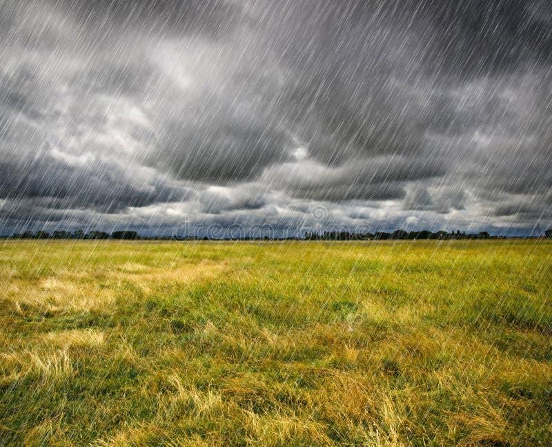 在大草原的大雨 免版税图库摄影