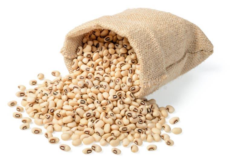 在大袋的未加工的母牛豌豆豆 库存照片