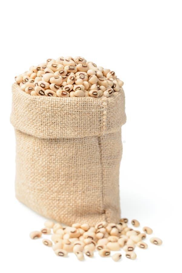 在大袋的未加工的母牛豌豆豆 图库摄影