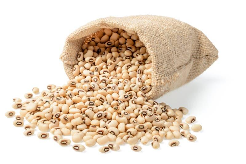 在大袋的未加工的母牛豌豆豆 免版税图库摄影