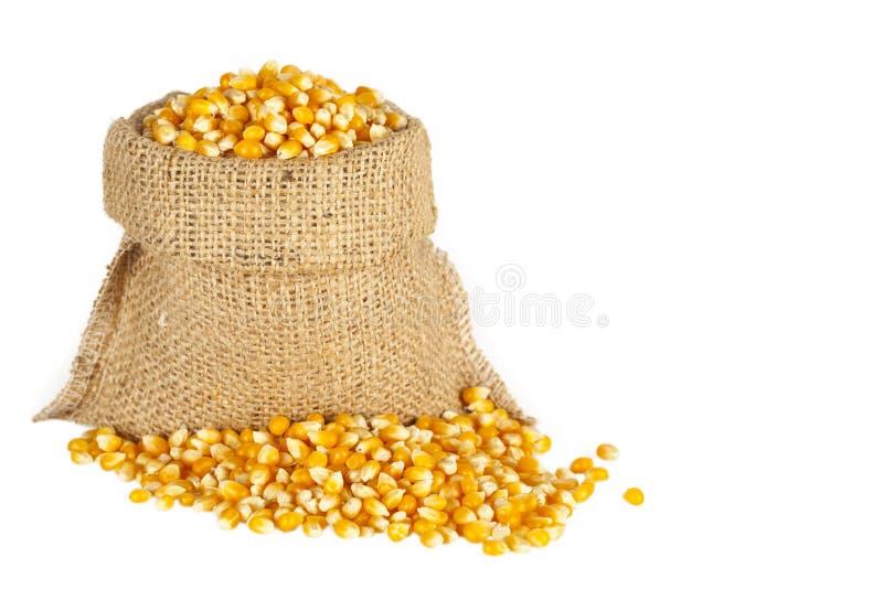 在大袋的玉米 库存照片