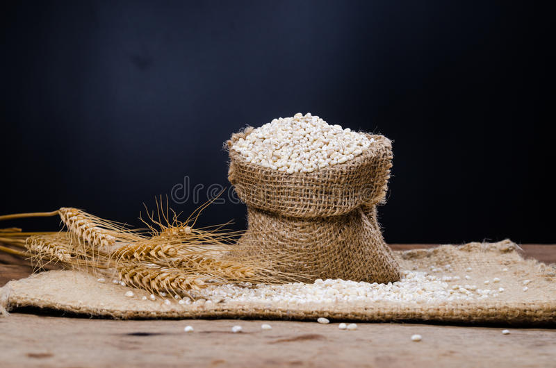 在大袋袋子的大麦五谷 库存照片