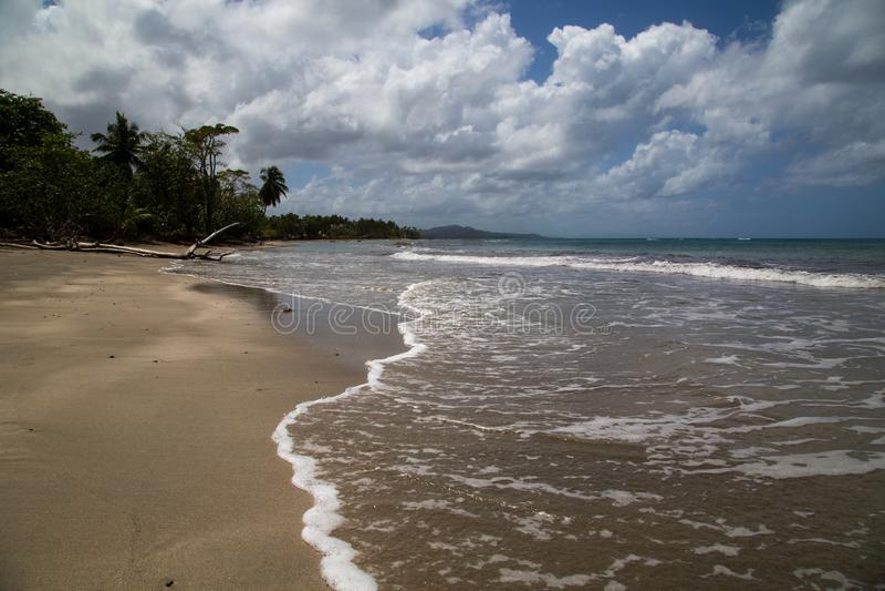 在大西洋的海岸线在多米尼加共和国 免版税图库摄影