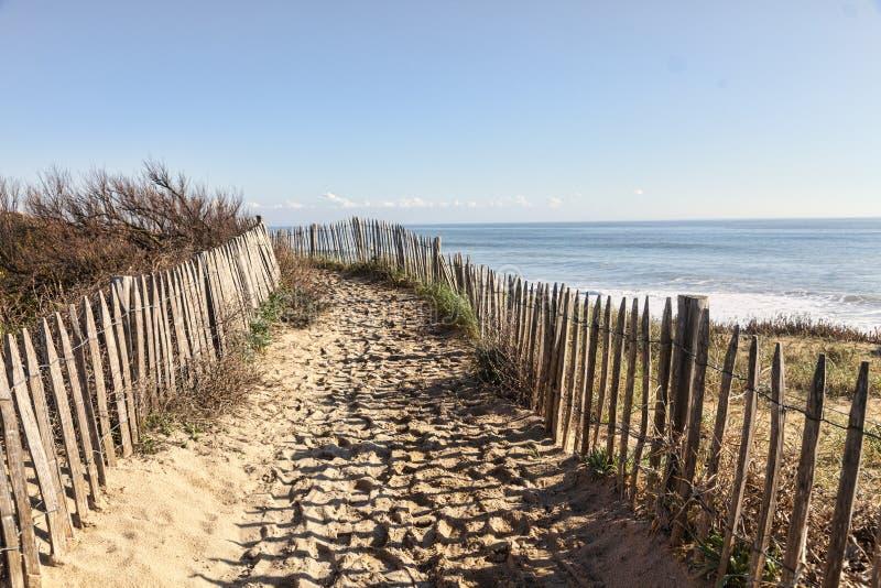 在大西洋沙丘的小径在布里坦尼 免版税库存照片
