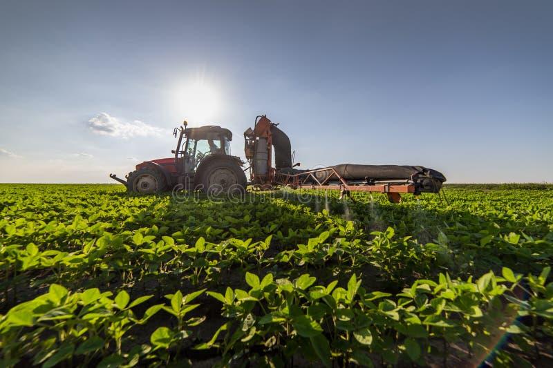 在大豆豆领域的喷洒的杀虫剂 免版税图库摄影