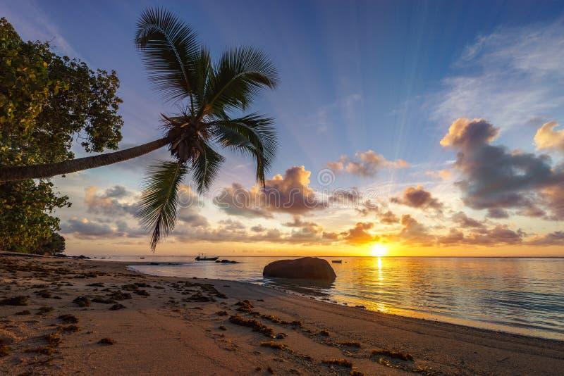 在天堂海滩,塞舌尔群岛4的美好的日出 免版税图库摄影