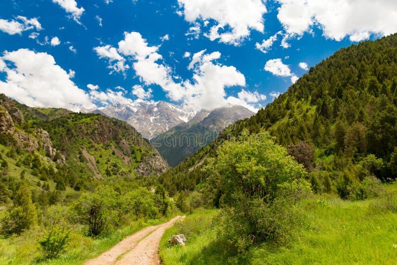 在天山山的一条土路在春天 免版税库存照片