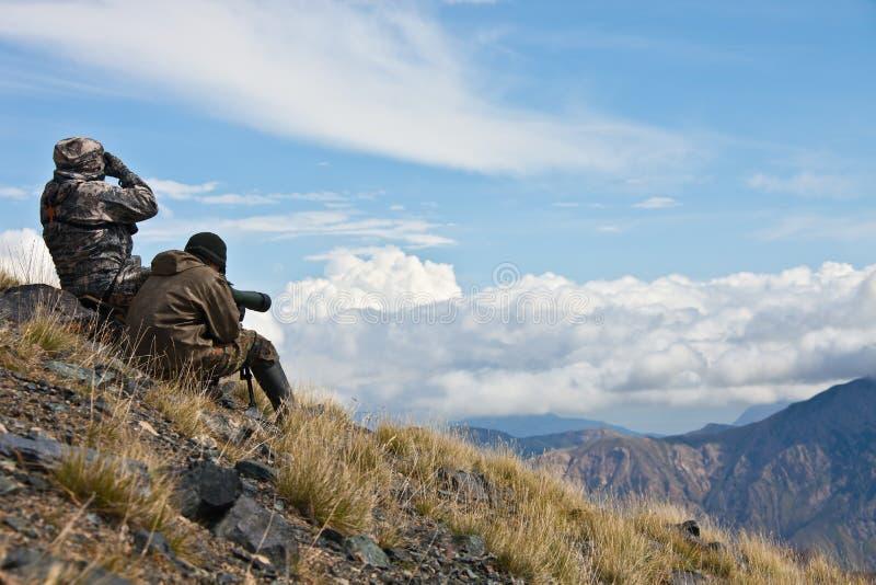 在天山山的狩猎高地山羊 库存照片