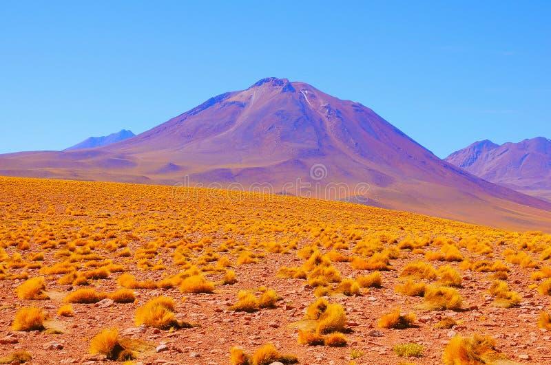 在天时间的火山的风景 库存照片