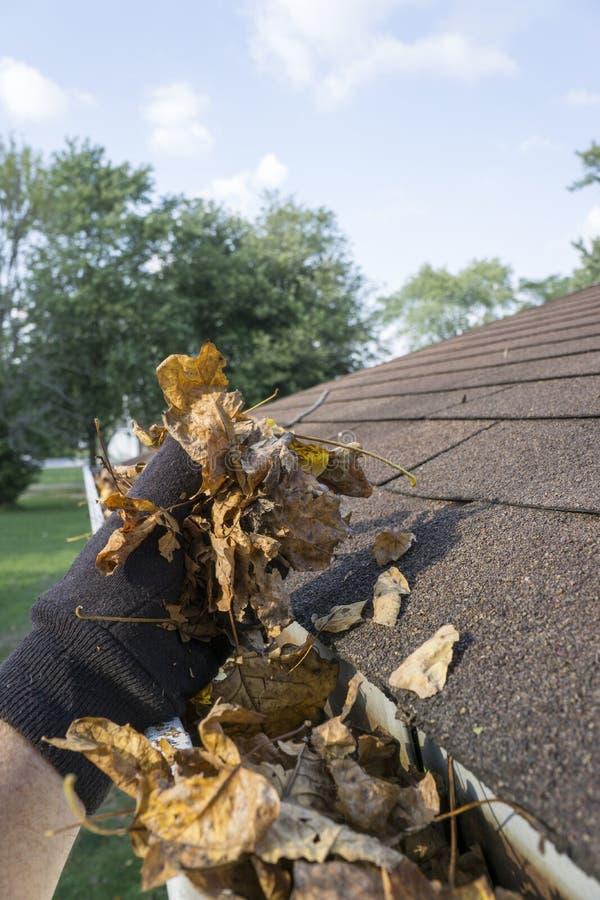 在天沟外面的清洗的叶子 免版税库存照片