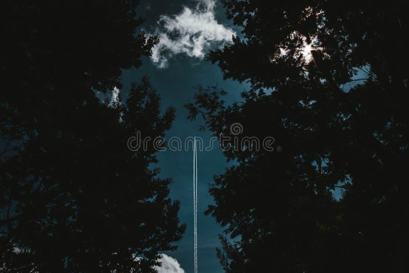 在天空射击的一次火箭飞行通过森林 库存照片