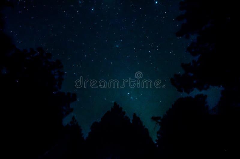 在天空的星形 库存图片
