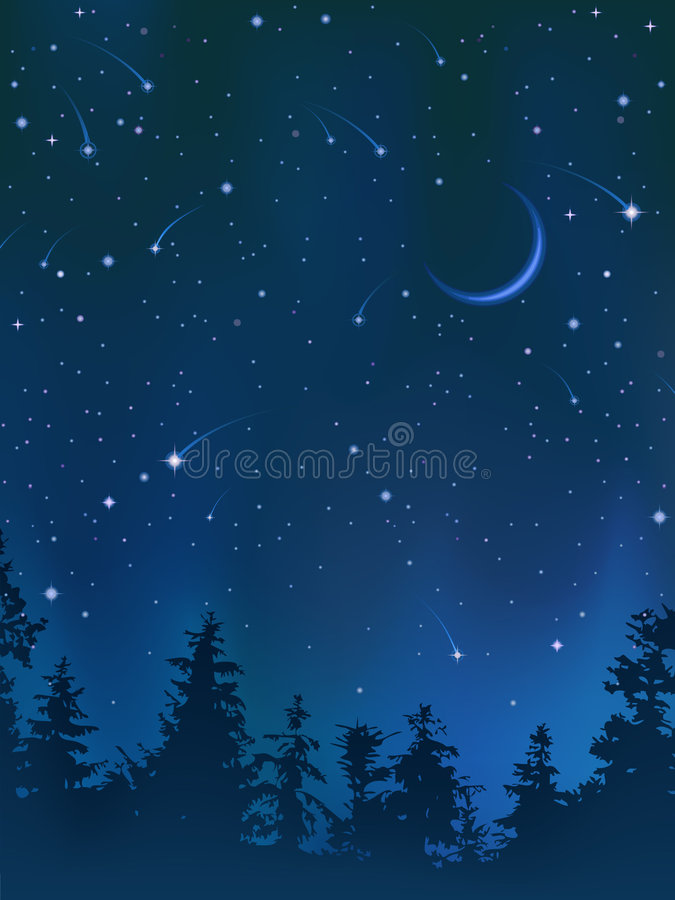 在天空的清楚的森林晚上 向量例证