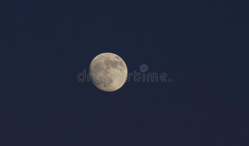 在天空的满月在深蓝背景 免版税图库摄影