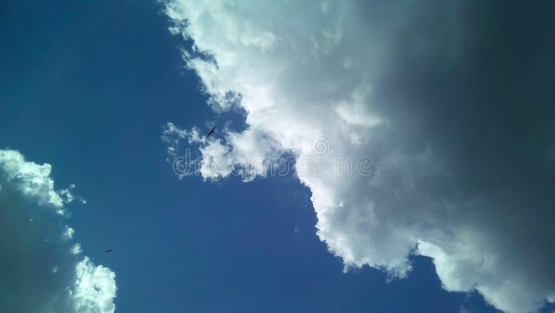 在天空的美丽的云彩在一夏天好日子 精美树荫白色,灰色,蓝色 库存图片