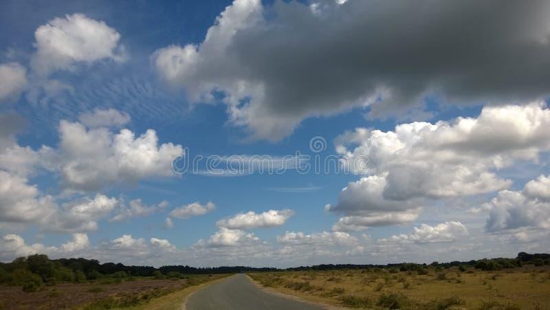 在天空的羽毛 免版税库存照片