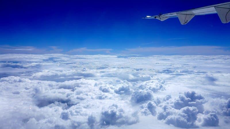 在天空的飞行 库存图片