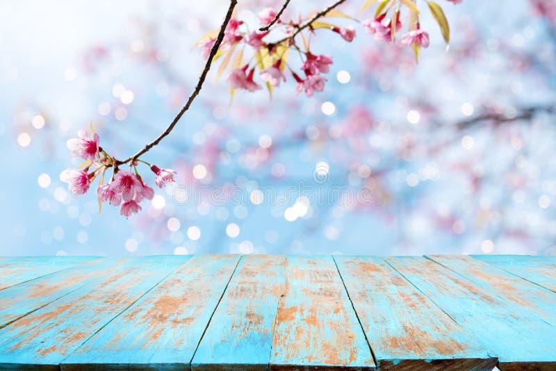 在天空背景的桃红色樱花花佐仓在春季 免版税图库摄影