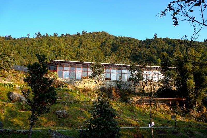 在天空蔚蓝下的美丽的玻璃制造的植物房子在甘托克的小山森林里 库存照片
