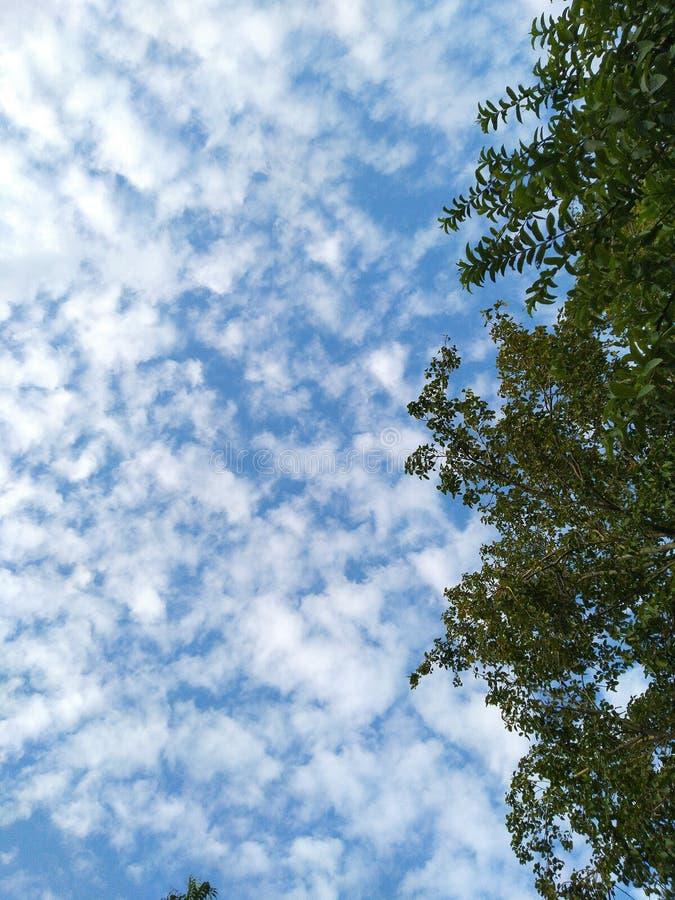在天空蔚蓝的云彩看起来美丽令人敬畏 免版税库存照片