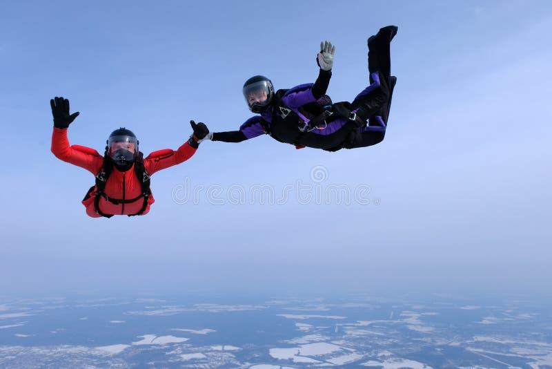 在天空蔚蓝的Skydiving 两个跳伞运动员握手 免版税库存图片