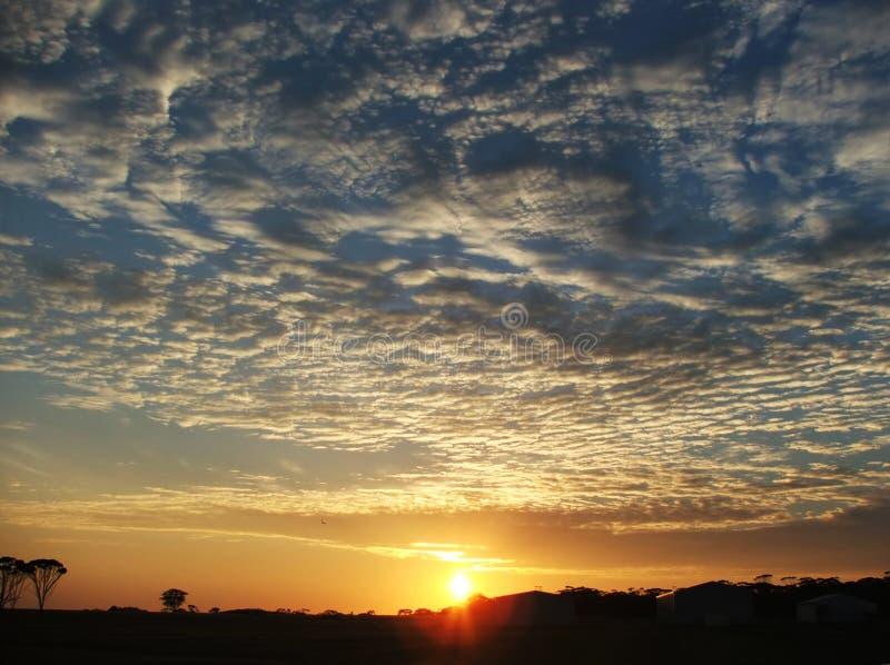 在天空sunsrise的农场 免版税库存照片
