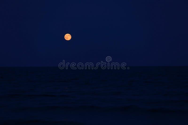 在天际的红色满月在海 免版税库存照片