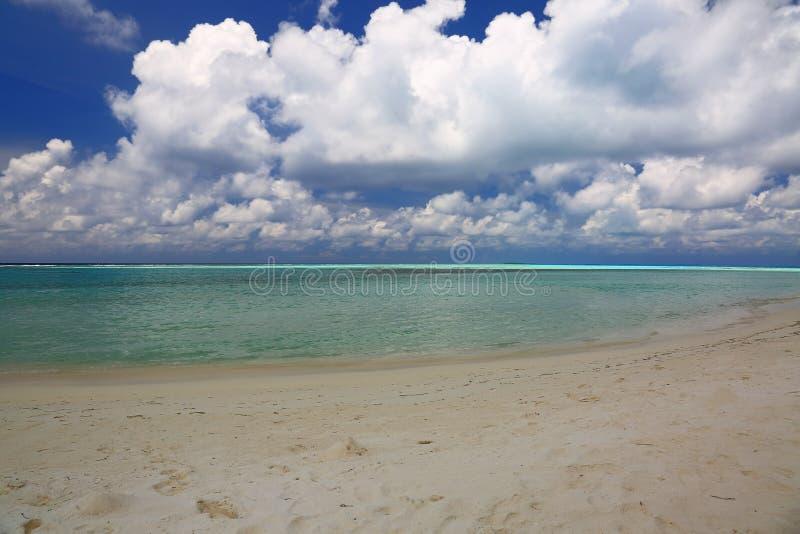 在天际线的看法从白色沙子海滩,印度洋,马尔代夫海岛 免版税库存图片
