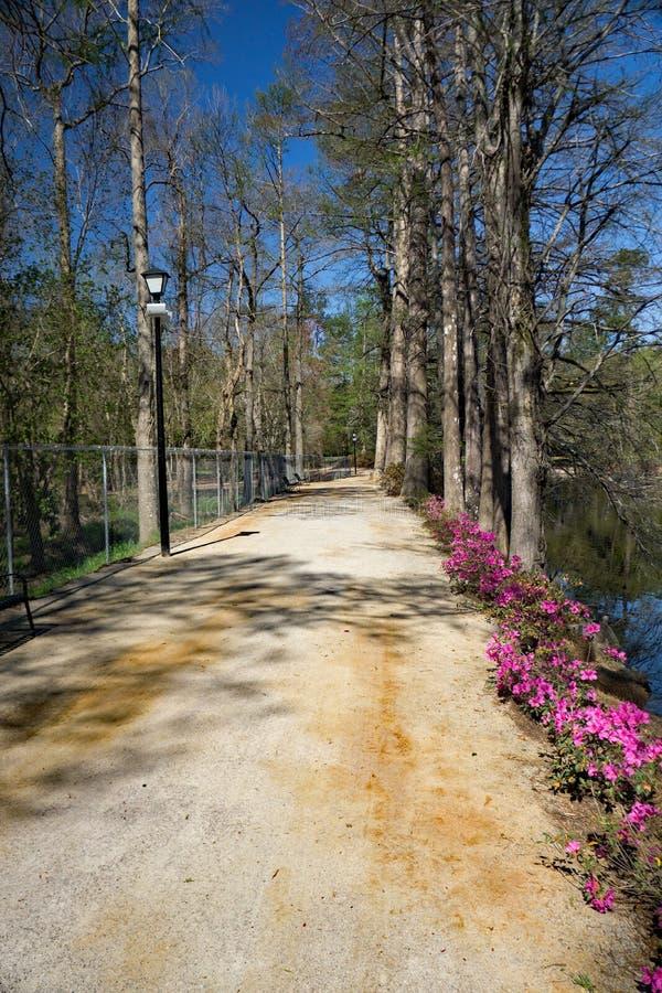 在天鹅湖虹膜庭院的人行道, Sumter, SC 库存图片