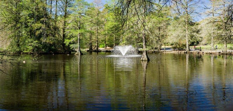 在天鹅湖虹膜庭院的喷泉, Sumter, SC 免版税图库摄影