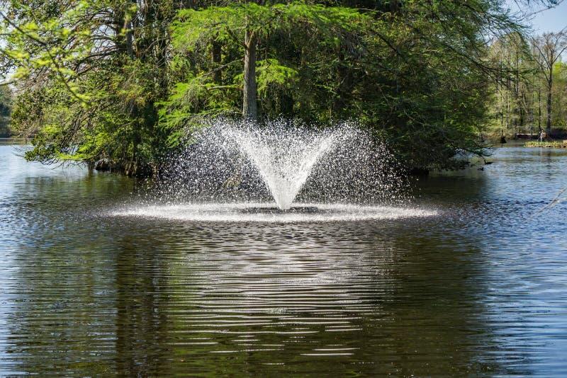 在天鹅湖虹膜庭院的喷泉, Sumter, SC 图库摄影