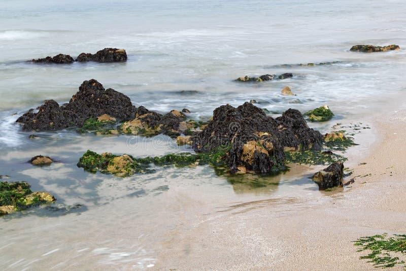 在太平洋的美好的岩层在半月湾附近 免版税库存图片