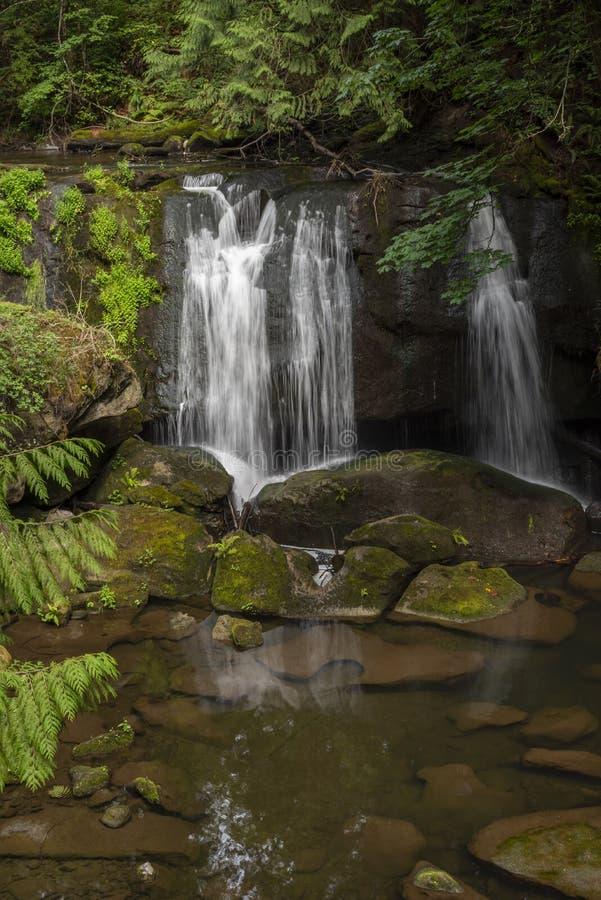 在太平洋西北地区5的瀑布 免版税库存图片