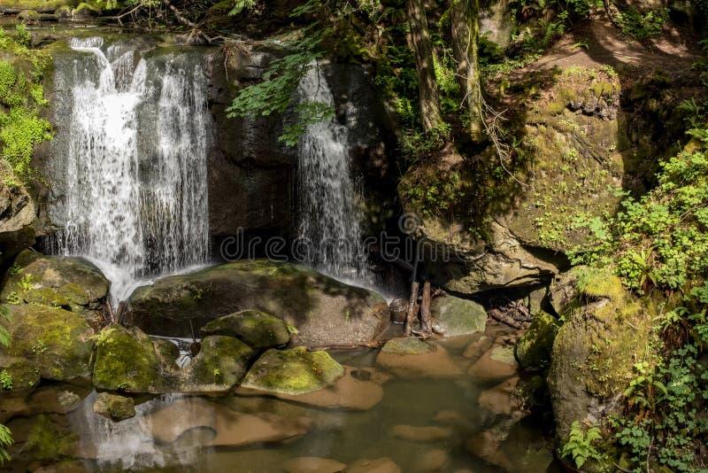 在太平洋西北地区6的瀑布 库存图片