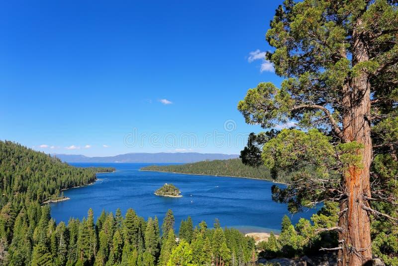 在太浩湖的鲜绿色海湾有Fannette海岛的,加利福尼亚,美国 免版税库存照片