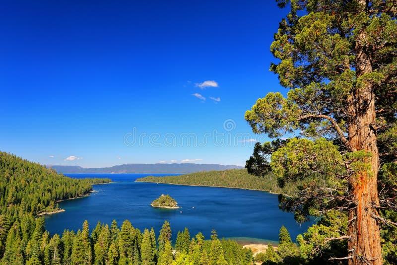 在太浩湖的鲜绿色海湾有Fannette海岛的,加利福尼亚,美国 免版税库存图片