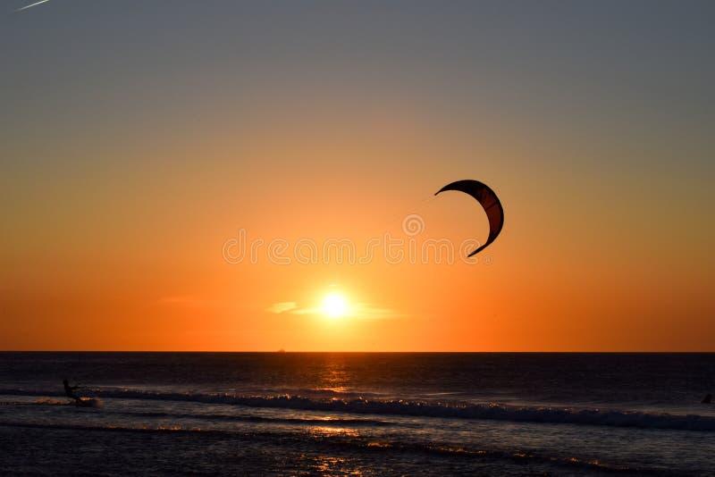 在太阳前面的风帆冲浪者风筝在与狗的海滩 库存照片