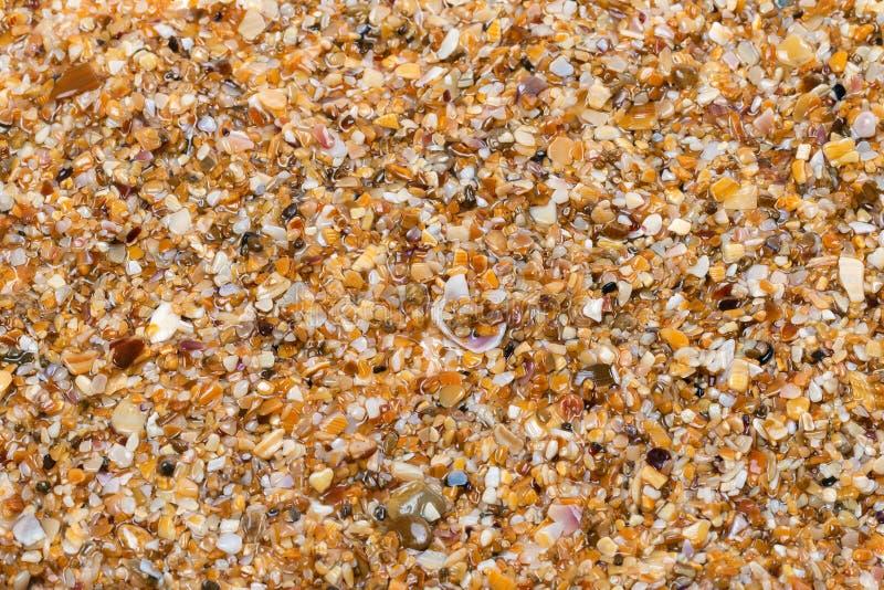 在太阳夏日弄湿在海滩的多色沙子 库存照片