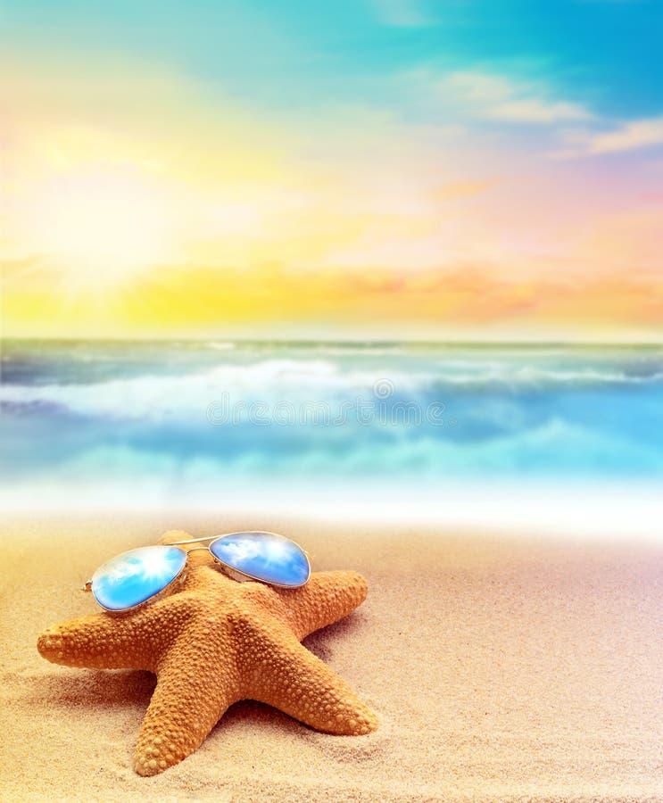 在太阳镜的海星在夏天海滩 免版税库存照片