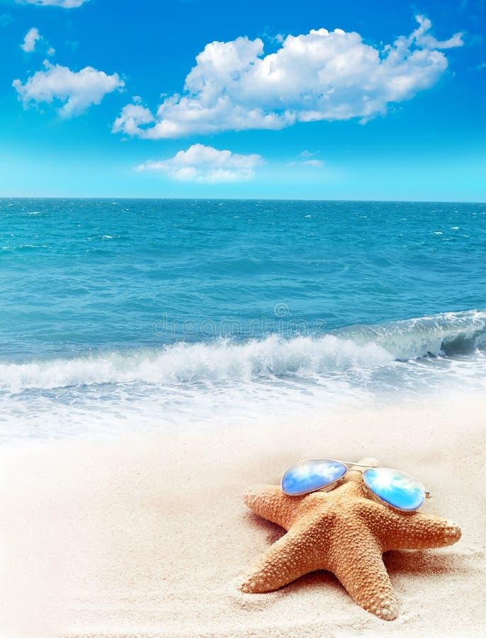 在太阳镜的海星在沙滩 免版税库存照片
