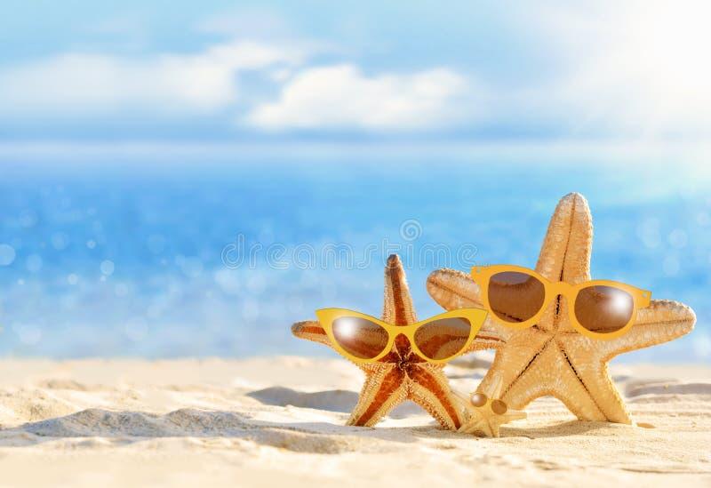 在太阳镜的海星在海滨 海滩 免版税库存图片