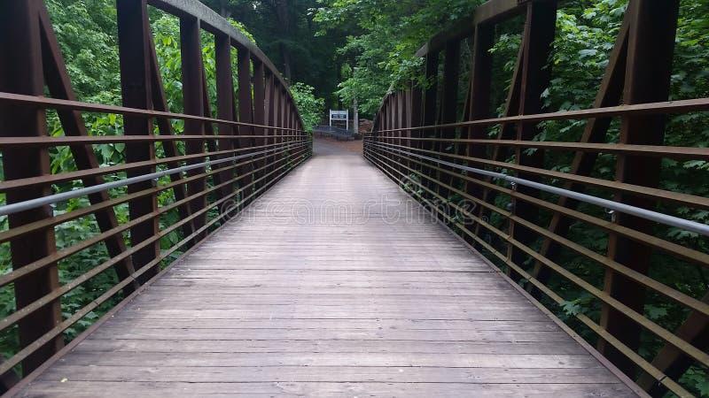 在失去的河洞的桥梁在肯塔基 库存图片
