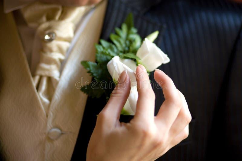 在夹克的钮扣眼上插的花 库存图片