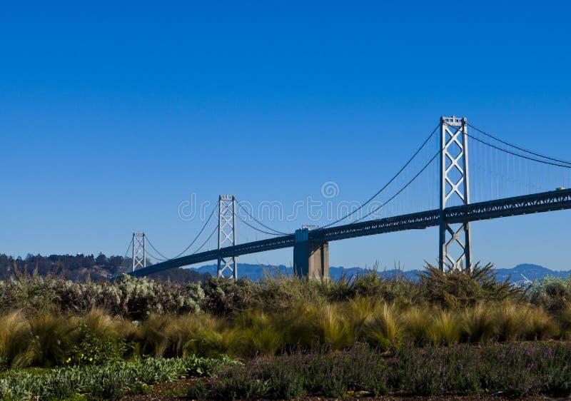 在奥克兰桥梁,旧金山的植被 免版税库存照片