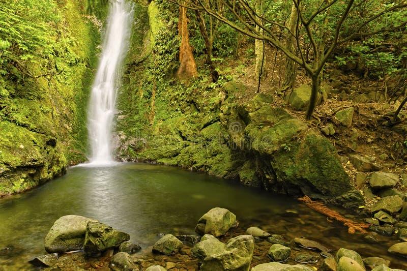 在奥阿胡岛监视的瀑布 库存图片