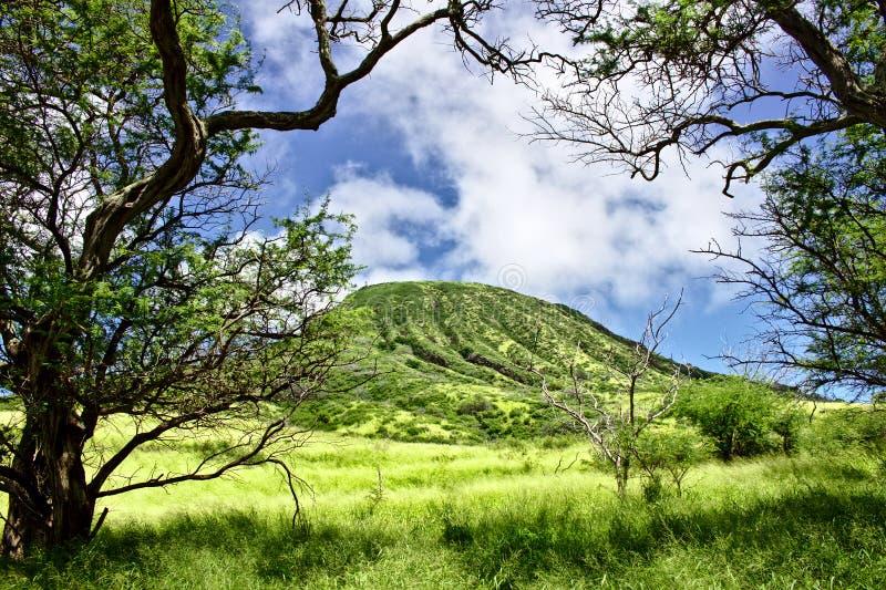 在奥阿胡岛,夏威夷的Koko头 库存照片