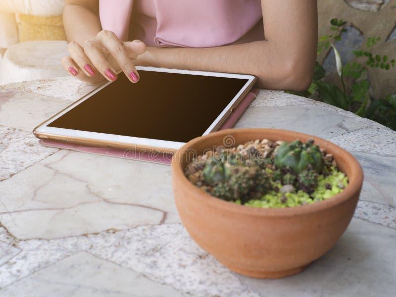 在女商人的选择聚焦使用片剂用在前景的被弄脏的仙人掌 免版税库存照片