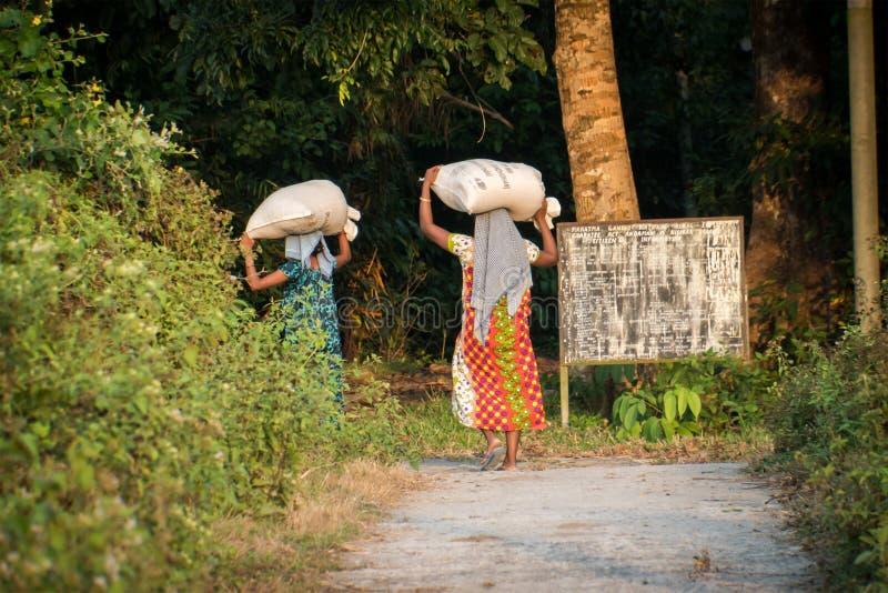 在她的头的一不明身份的印度女孩运载的放换洗物的袋子 免版税图库摄影